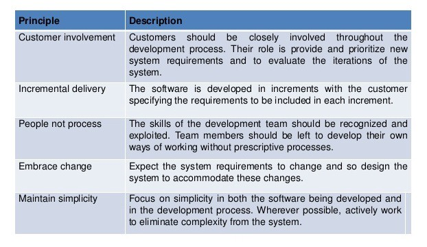 describe system software and application software